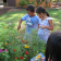 ʻĀINA In Schools garden-based learning Butterfly Garden lesson
