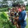 Students visit Waiahole Sticky Farms Taro Patch